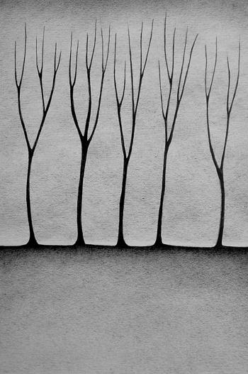 Five Trees by Jennifer Daltry