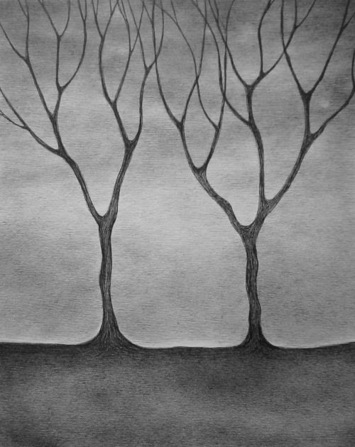 'Tall Trees' Ink on Paper 2016